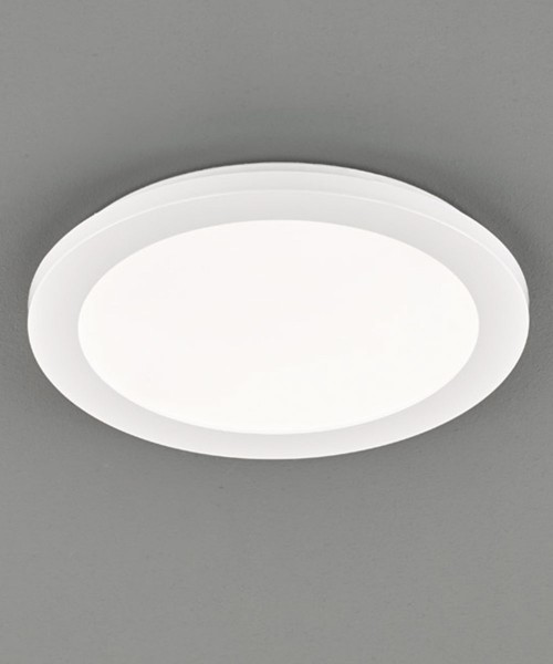 Потолочный светильник REALITY R62921501 Camillus