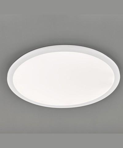 Потолочный светильник Reality R62923001 Camillus